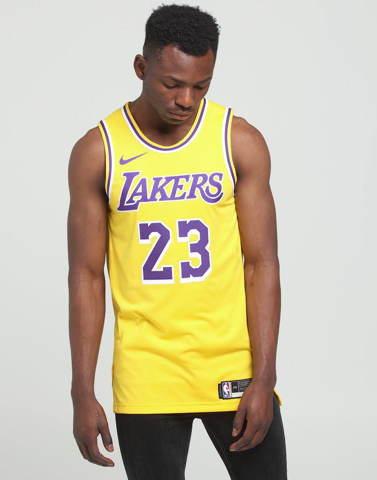 sports shoes d0140 5b857 Nike Los Angeles Lakers LeBron James #23 Icon Edition Swingman Jersey  Amarillo